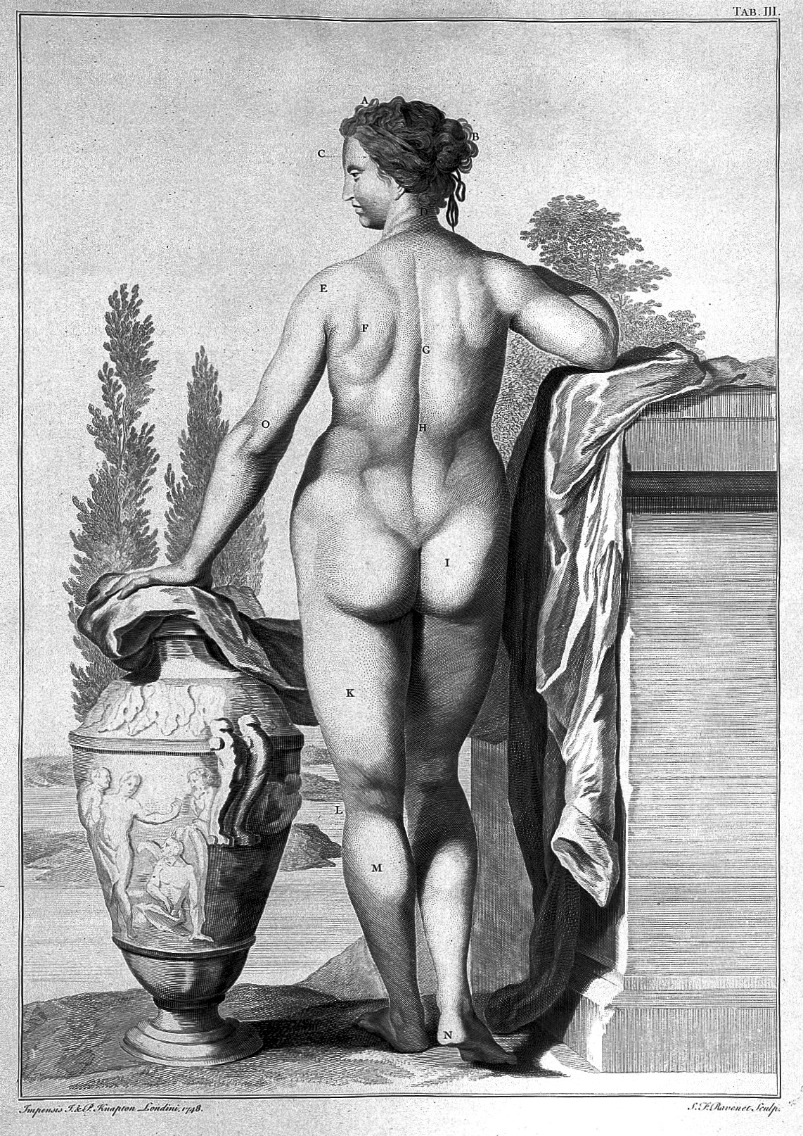 Anatomical Reference Nudes