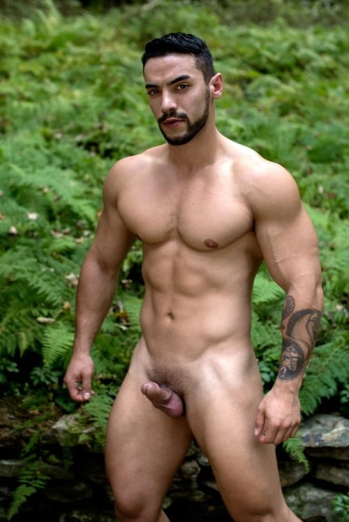 Big Dick Man Naked Picture