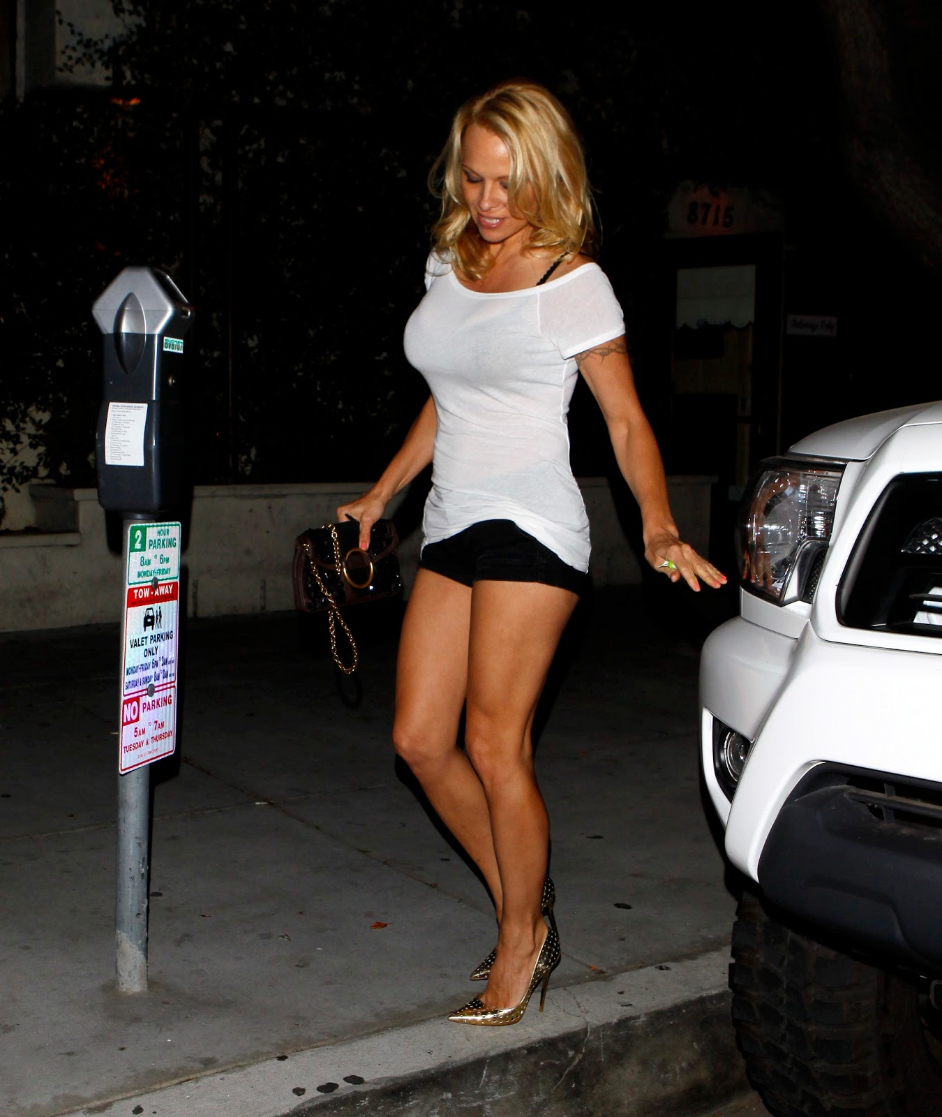 Naked Pam Anderson Boobs Pictures