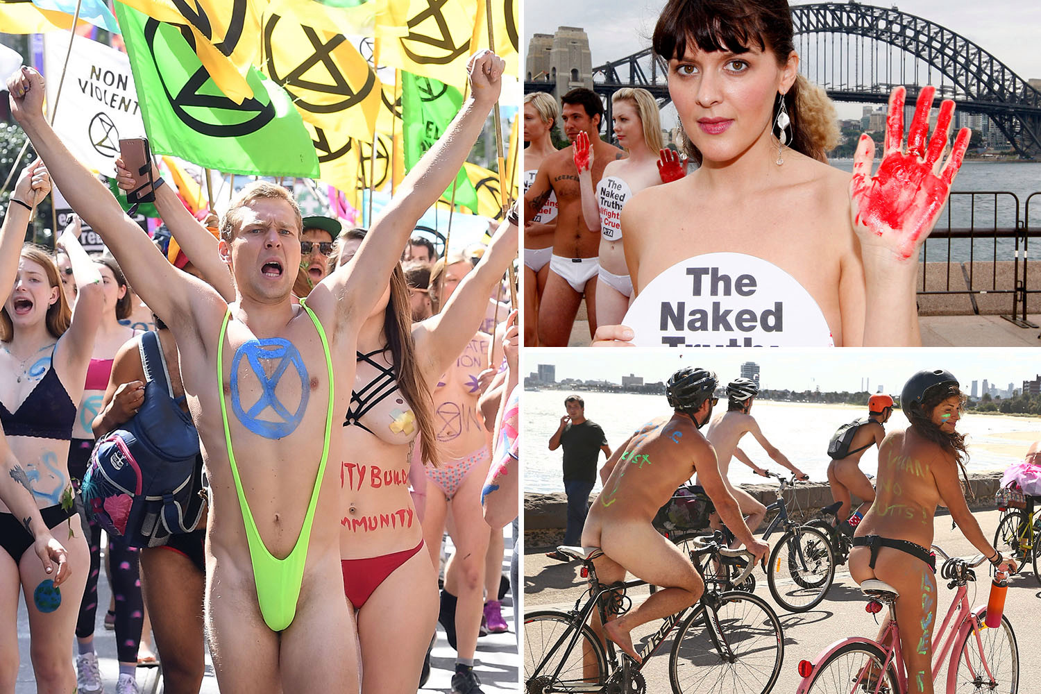 Naked Protester Fur Sisters