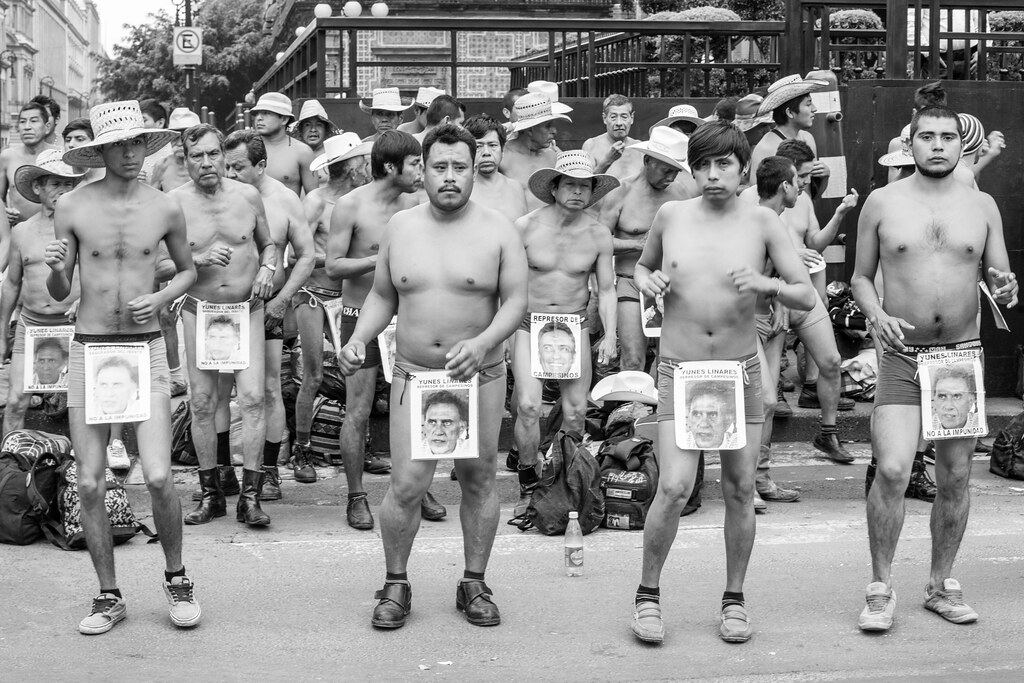 Worlds Naked Protesters