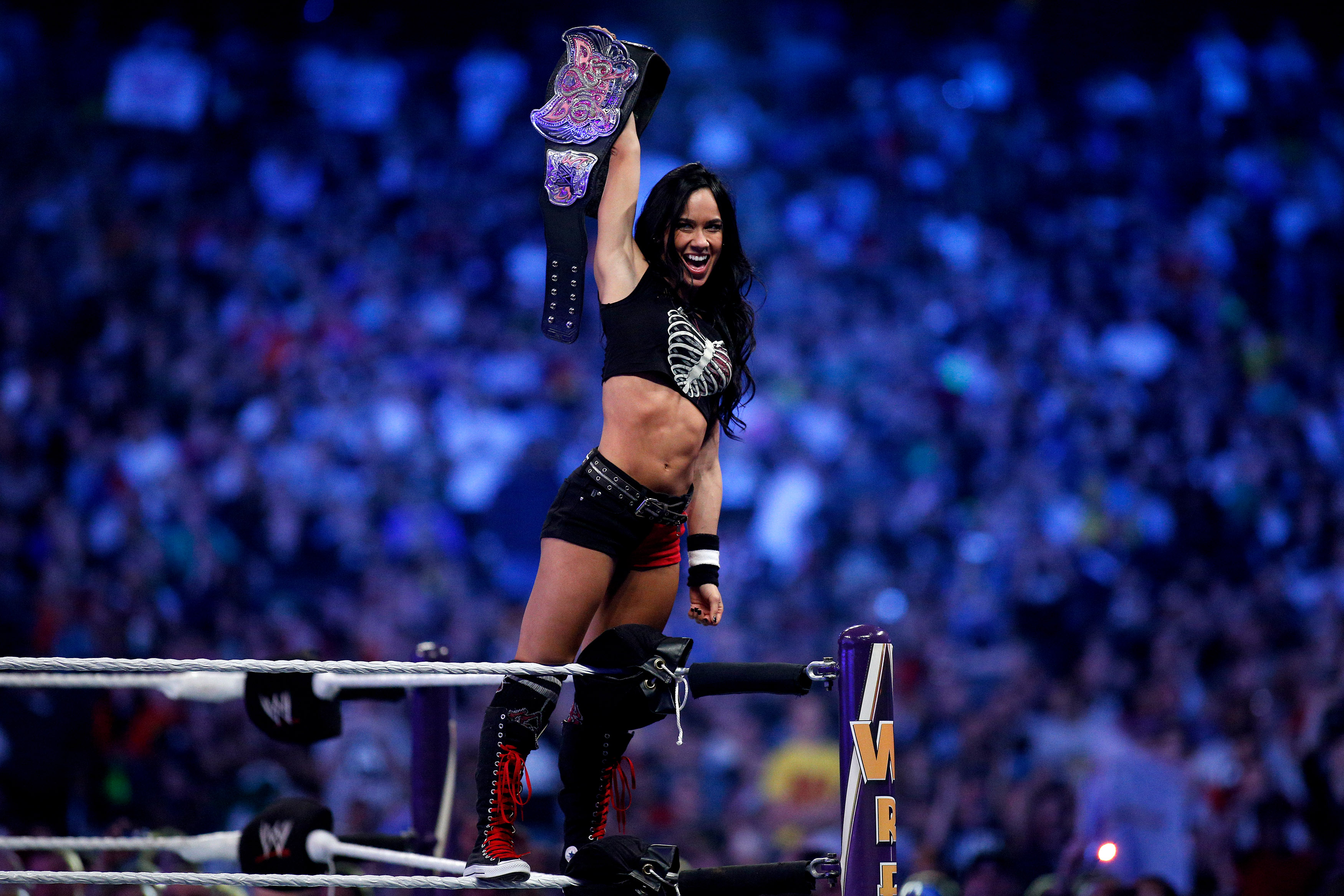 Wwe Aj Lee Naked Pictures